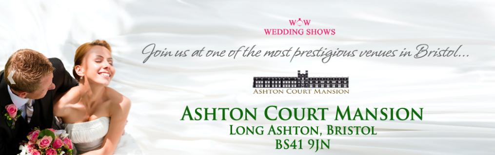 Dave Dean Ashton Court Mansion Wedding Fayre June 2015